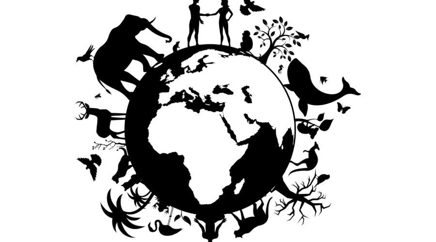 biodiversity_sstock